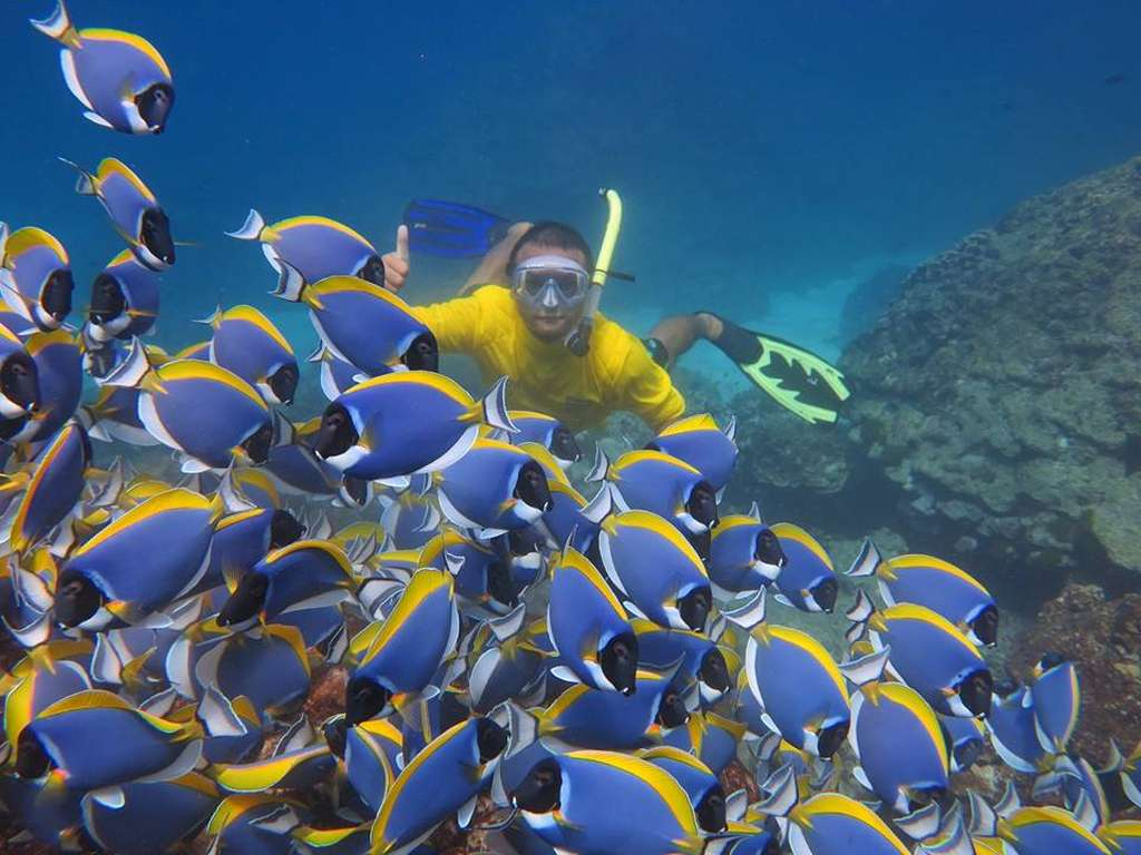Day 4: Optional Hurghada Snorkeling Trip: